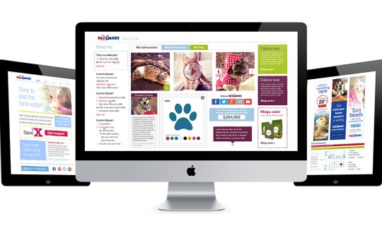 web design, web, petsmart, graphic design, phoenix, scottsdale